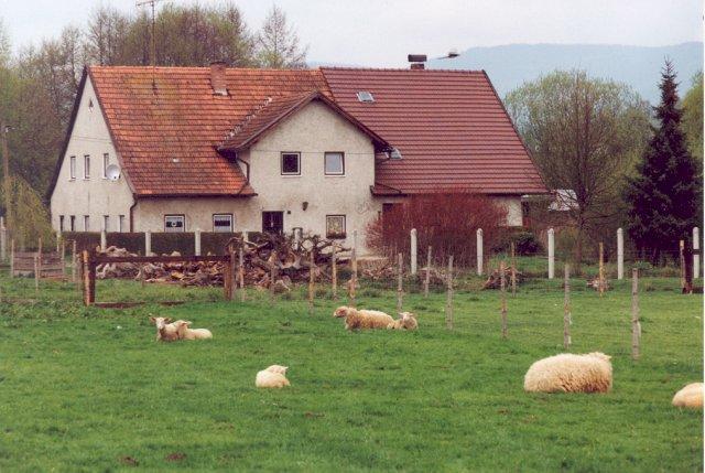 Mühlhiasl